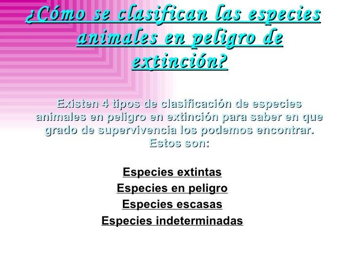 <ul><li>¿Cómo se clasifican las especies animales en peligro de extinción? Existen 4 tipos de clasificación de especies an...