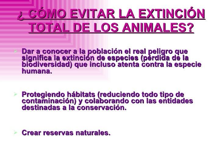 ¿ CÓMO EVITAR LA EXTINCIÓN TOTAL DE LOS ANIMALES? <ul><li>Dar a conocer a la población el real peligro que significa la ex...