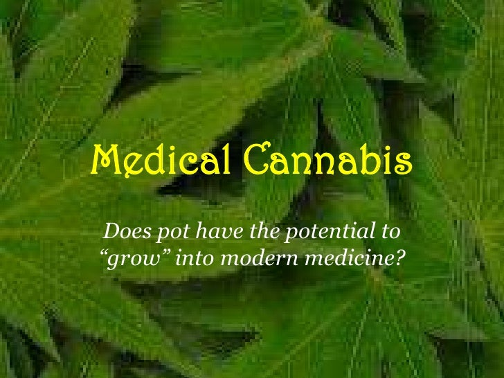 """Medical Cannabis<br />Does pot have the potential to """"grow"""" into modern medicine?<br />"""