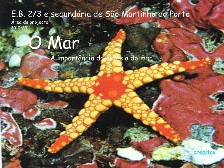 E.B. 2/3 e secundária de São Martinho do PortoÁrea de projecto2010/2011       O Mar                   A importância da est...