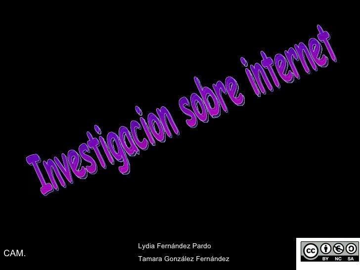 Investigacion sobre internet Lydia Fernández Pardo  Tamara González Fernández CAM.
