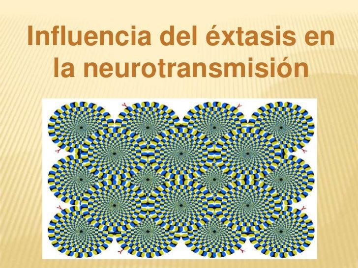 Influencia del éxtasis en  la neurotransmisión