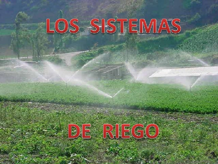 Los sistemas de riegos son un conjunto de estructuras que permiten proporcionar elagua suficiente a las plantas, complemen...