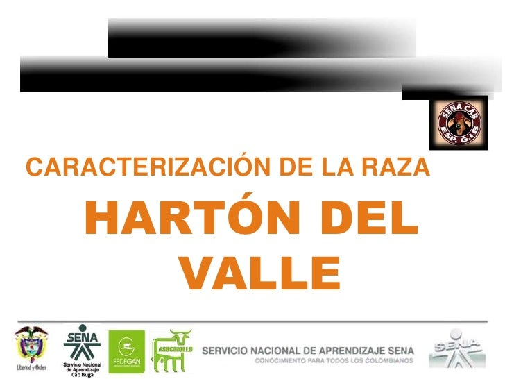 CARACTERIZACIÓN DE LA RAZA   HARTÓN DEL      VALLE