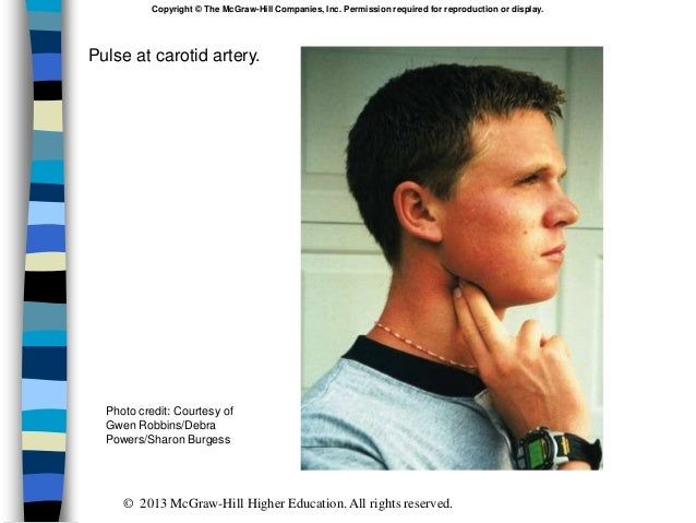 Pulse at carotid artery. Copyright © The McGraw-Hill Companies, Inc. Permission required for reproduction or display. Phot...