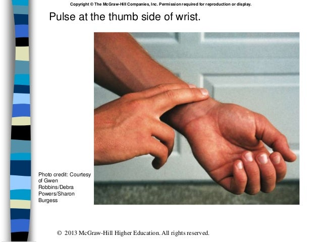 Pulse at the thumb side of wrist. Copyright © The McGraw-Hill Companies, Inc. Permission required for reproduction or disp...