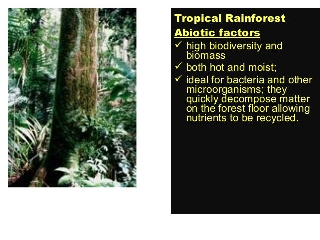 Powerpoint ..biomes
