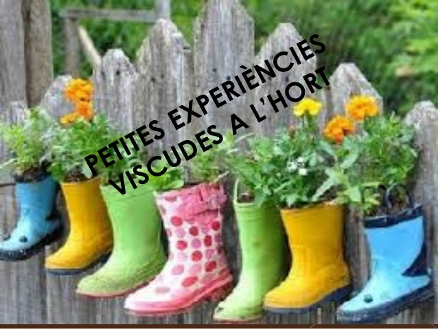 PETITES EXPERIÈNCIES VISCUDES A L'HORT