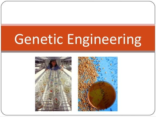 genetic engineering power point