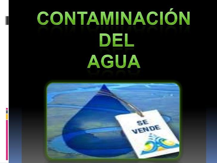 Tipos y efectos de los contaminantes del agua: AGENTES PATÓGENOS O CAUSANTES DE ENFERMEDADES:Bacterias                   T...