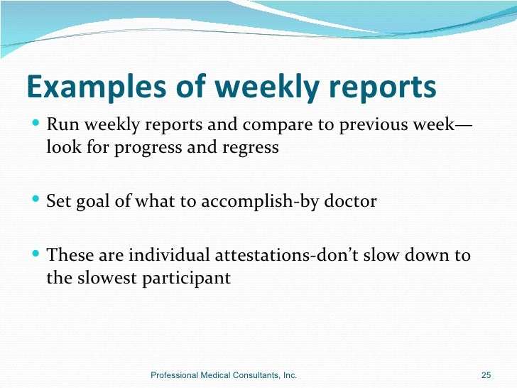 Doc585640 Weekly Report Example Weekly Activity Report – Status Report Examples