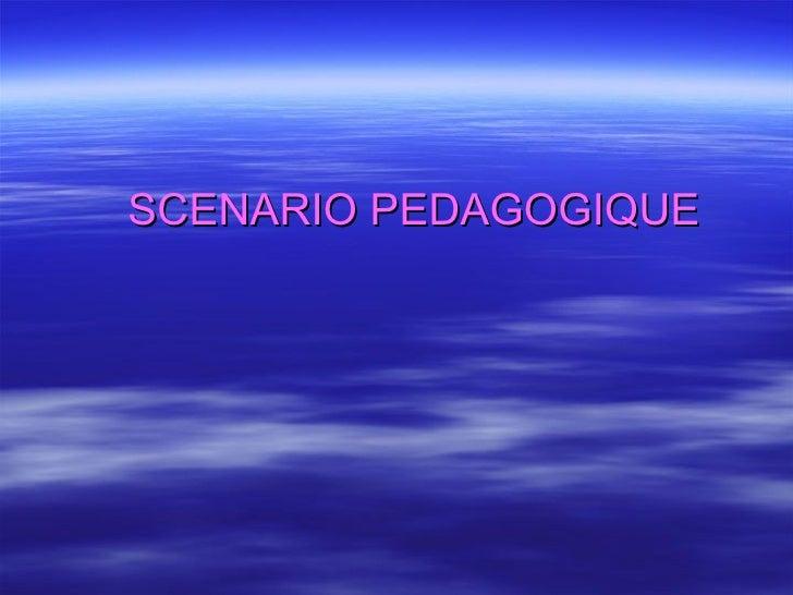 SCENARIO PEDAGOGIQUE