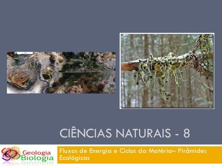 CIÊNCIAS NATURAIS - 8 Fluxos de Energia e Ciclos da Matéria– Pirâmides Ecológicas