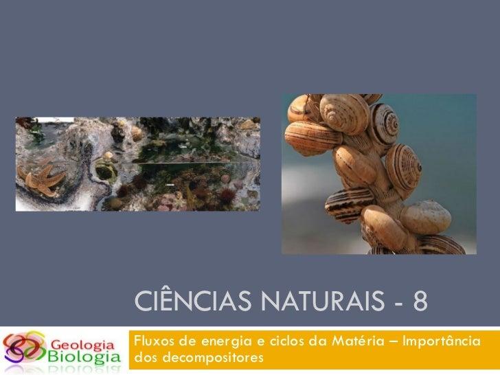 CIÊNCIAS NATURAIS - 8 Fluxos de energia e ciclos da Matéria – Importância dos decompositores