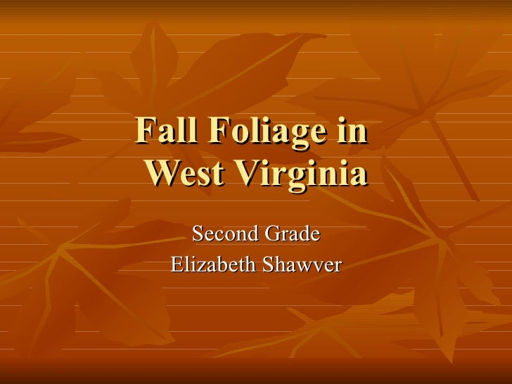 Fall Foliage in  West Virginia Second Grade Elizabeth Shawver