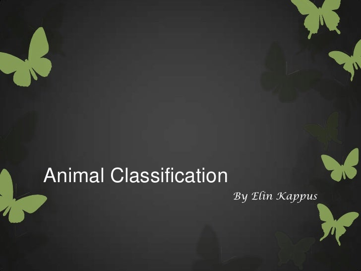 Animal Classification                        By Elin Kappus
