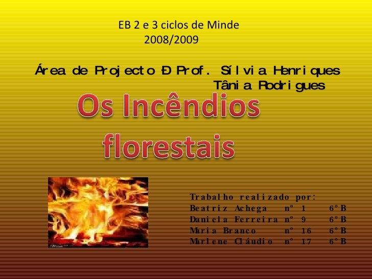 Área de Projecto – Prof. Sílvia Henriques   Tânia Rodrigues  EB 2 e 3 ciclos de Minde 2008/2009 Trabalho realizado por: Be...