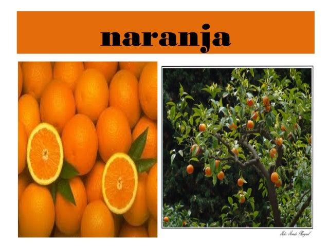 Power point arboles frutales for Tipos de viveros frutales