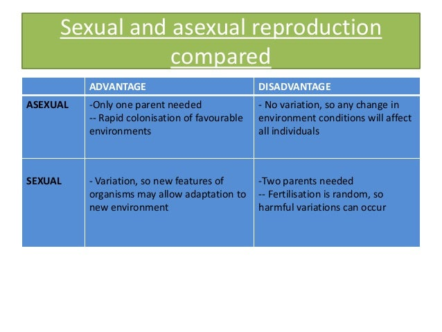 Advantages and disadvantages of sexual and asexual reproduction in flowering plants