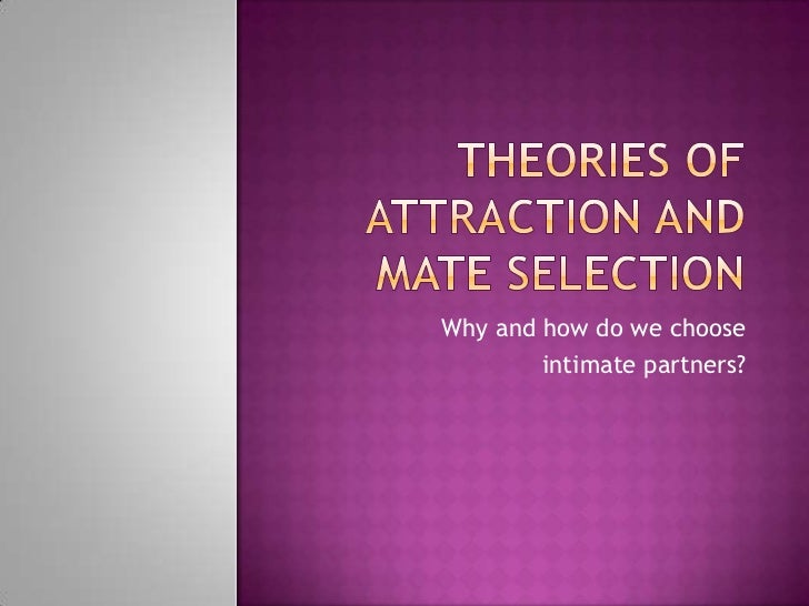 Understanding the Theories of Attraction and Mate Selection