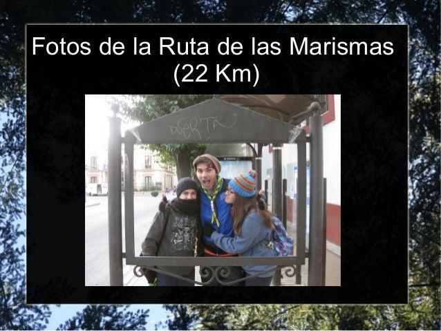 Fotos de la Ruta de las Marismas (22 Km)