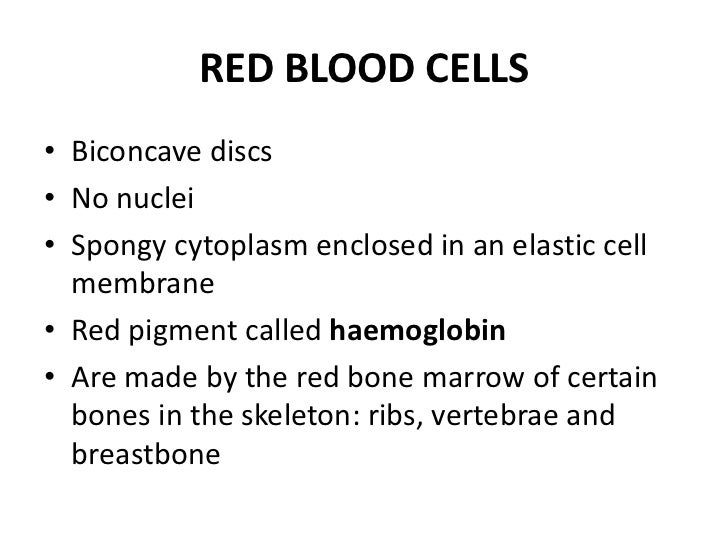 Powerpoint circulatory system red blood cells ccuart Image collections
