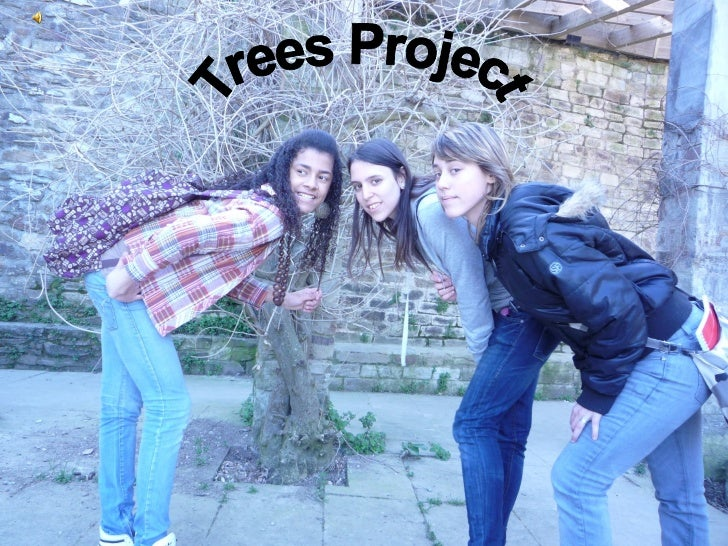 Trees Project
