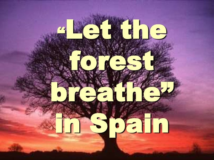 """""""Let the forest breathe"""" in Spain<br />"""