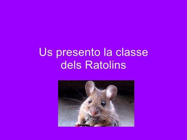 Us presento la classe dels Ratolins
