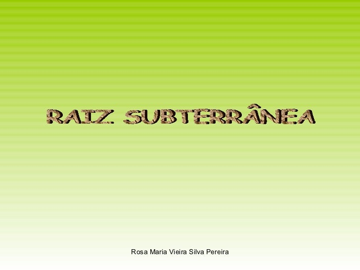 RAIZ SUBTERRÂNEA