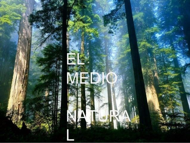 EL  MEDIO  .  NATURA  L
