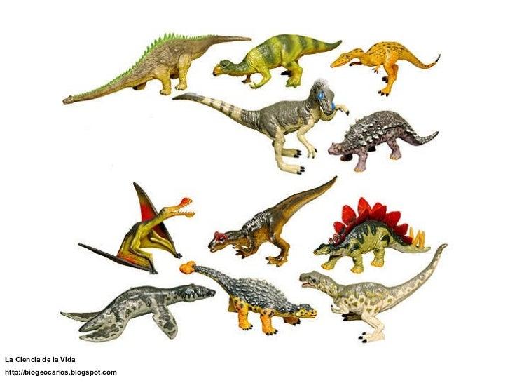 Nombre y foto de los dinosaurios