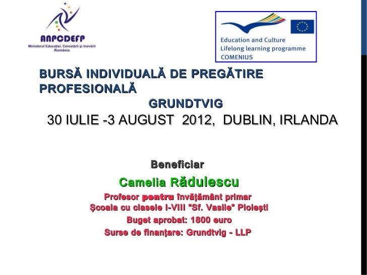 BURSĂ INDIVIDUALĂ DE PREGĂTIREPROFESIONALĂ               GRUNDTVIG30 IULIE -3 AUGUST 2012, DUBLIN, IRLANDA                ...