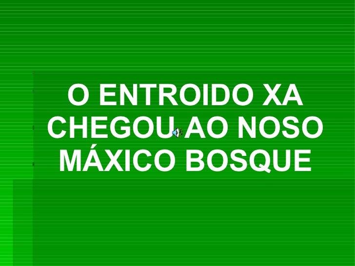 O ENTROIDO XACHEGOU AO NOSO MÁXICO BOSQUE