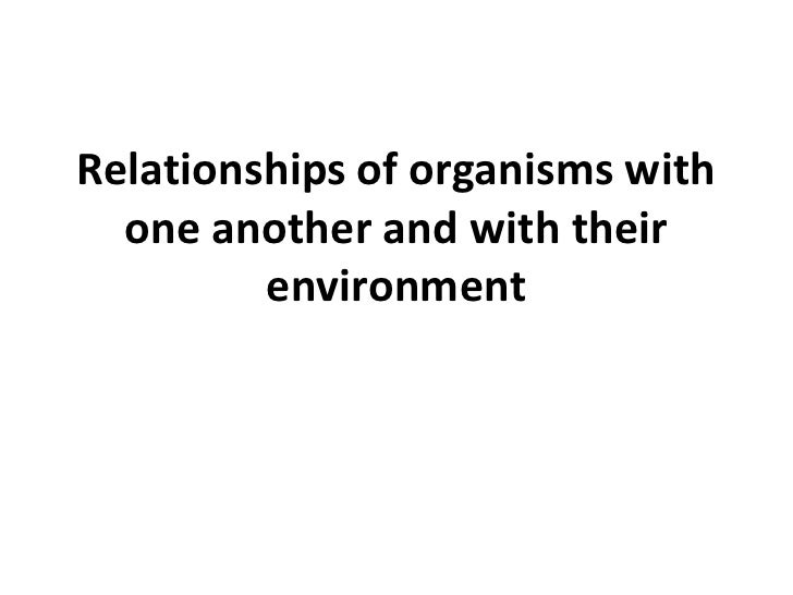 Relationships of organismswithoneanother and withtheirenvironment<br />