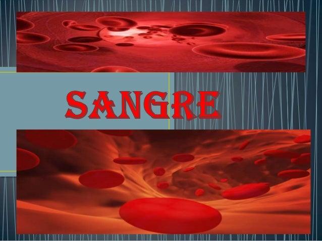 • › tejido conectivo especializado formado por células (eritrocitos y leucocitos) y fragmentos celulares (plaquetas) rodea...
