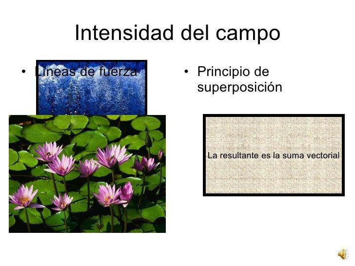 Intensidad del campo <ul><li>Líneas de fuerza </li></ul><ul><li>Principio de superposición </li></ul>La resultante es la s...