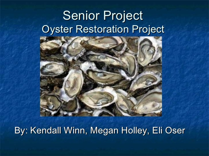 Senior Project      Oyster Restoration ProjectBy: Kendall Winn, Megan Holley, Eli Oser
