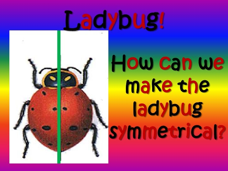 power point for butterfly symmetry