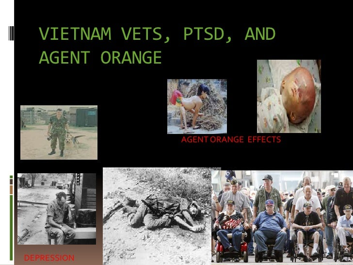 powerpoint for ptsd capstone project
