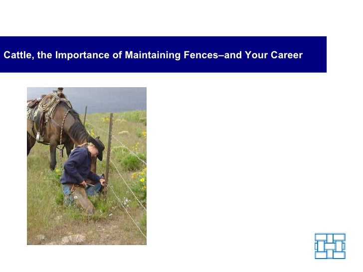 Cattle, the Importance of Maintaining Fences - and Your Career