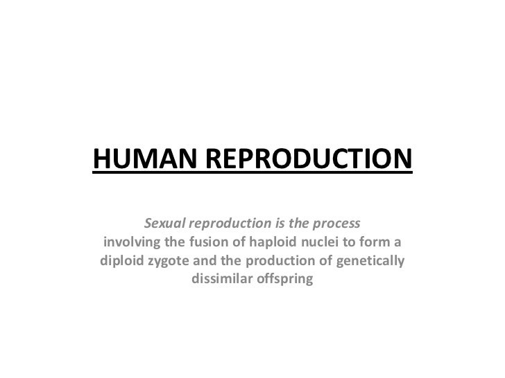 HUMAN REPRODUCTION<br />Sexual reproduction is the process<br />involving the fusion of haploid nuclei to form a<br />dipl...