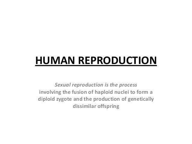 HUMAN REPRODUCTIONSexual reproduction is the processinvolving the fusion of haploid nuclei to form adiploid zygote and the...