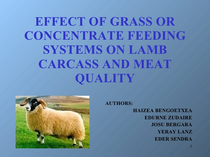 EFFECT OF GRASS OR CONCENTRATE FEEDING SYSTEMS ON LAMB CARCASS AND MEAT QUALITY AUTHORS: HAIZEA BENGOETXEA EDURNE ZUDAIRE ...