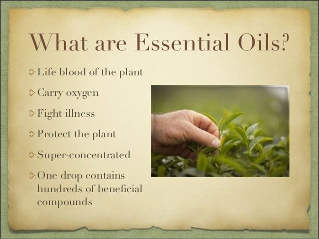 Power Point Introduction To Essential Oils Class