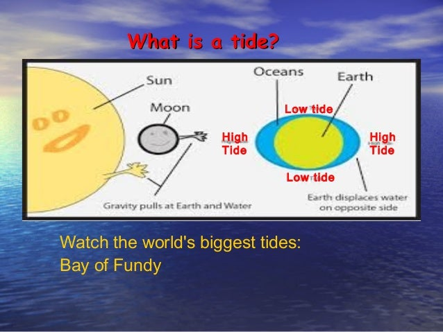 Powerpoint intro to tidal pools watch the worlds biggest tides bay of fundy what is a tide sciox Image collections