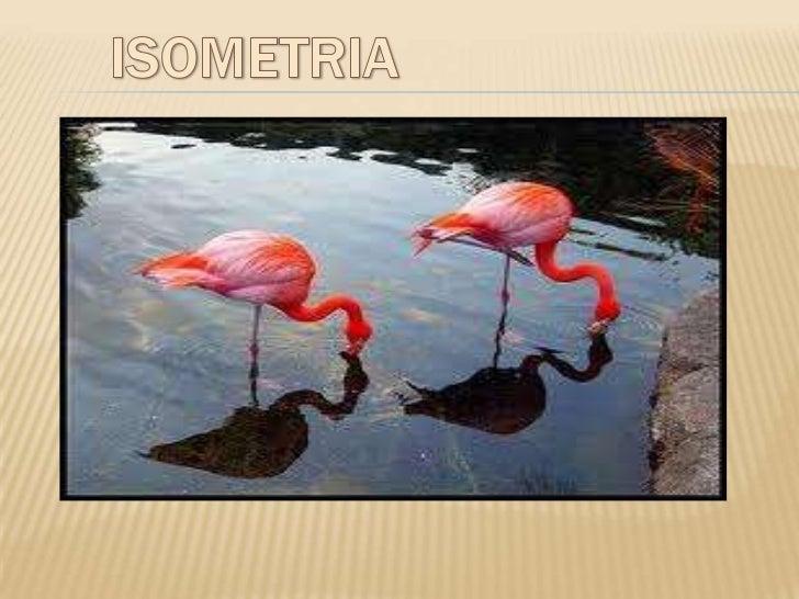 """El termino """"Isométria"""" deriva del griego,""""igual medida"""" y proviene del prefijo:          ISOS = IGUAL         METRÍA = MED..."""