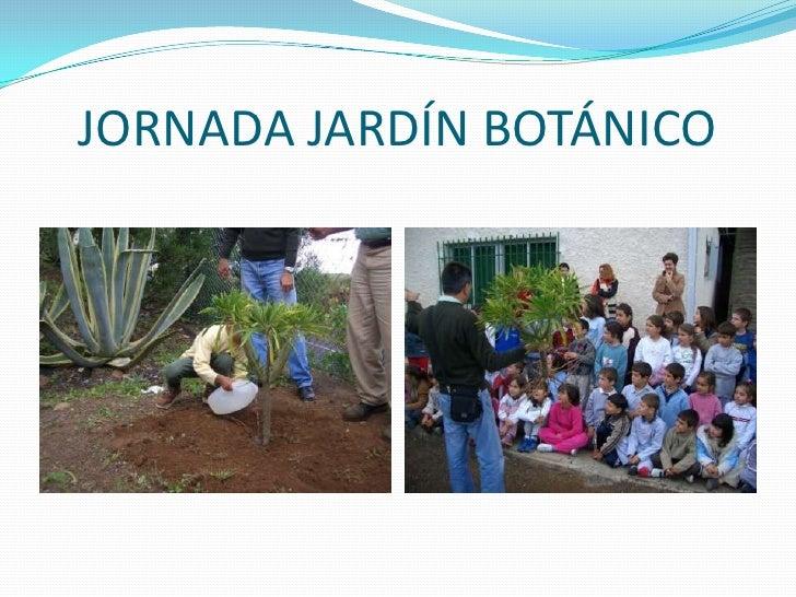 Presentaci n 1 ceip valverde for Ceip jardin botanico