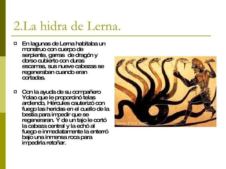 ponit latin
