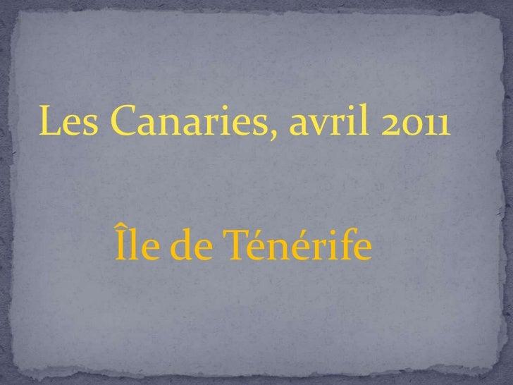Les Canaries, avril 2011    Île de Ténérife